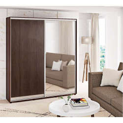 Шкаф-купе ДСП+Зеркало Стандарт 210/240х60х200 Комфорт-мебель