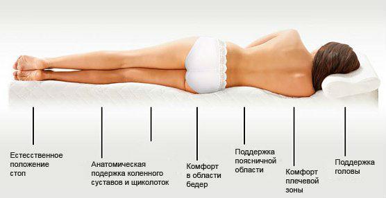 правильное положение спины