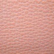Скаден розовый