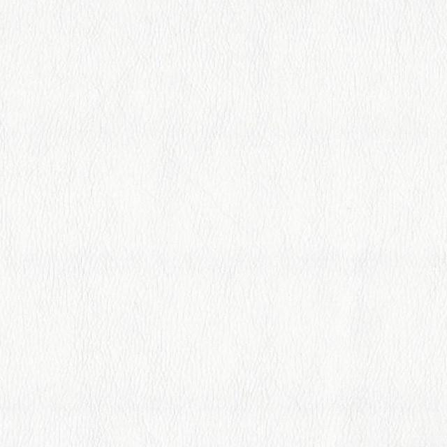 білий кожзам