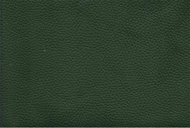 Темно-зеленая кожа