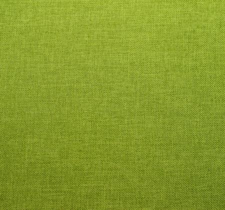 Olive 18